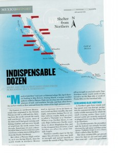 Cruising In Mexico  Best Shelters from Blue Northers-910-wide-2